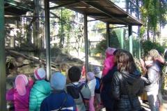 Ekskursija Zoodarzs