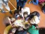 Lieldienu prieks Medumu speciālajā pamatskolā