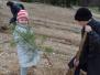 Medumu pamatskolas skolēni Lielās talkas laikā stāda kokus