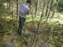 Meža un Dārza dienu aktivitāte mežā