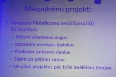 mazpulks1