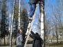 Naujenes pamatskolas skolēni sagaida gājputnus ar jauniem būrīšiem
