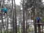 """Sventes vidusskolas 7.klases pārgājiens uz atpūtas parku """"Daugavpils Tarzāns"""""""