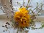 Ziedu un dārzeņu izstāde Kalupes pamatskolā
